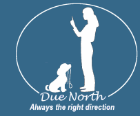 DueNorth Dog Training